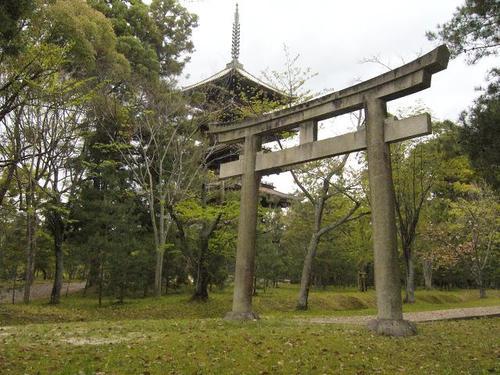 仁和寺内の鳥居 五重塔をバックに